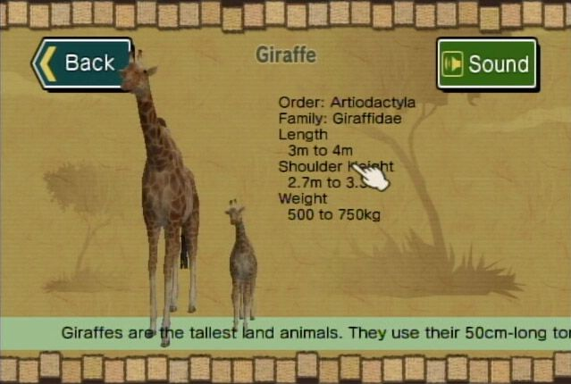 Safar'Wii - Screenshots - Bild 7