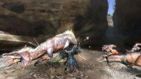 Monster Hunter 3 - Screenshots - Bild 2