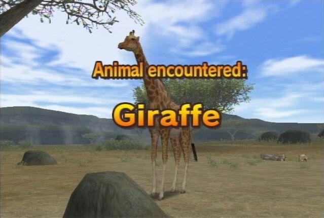 Safar'Wii - Screenshots - Bild 3
