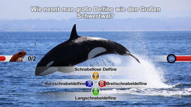 NatGeo Quiz! Wild Life - Screenshots - Bild 2
