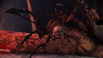 Dragon Age: Origins - Awakening - Screenshots - Bild 57