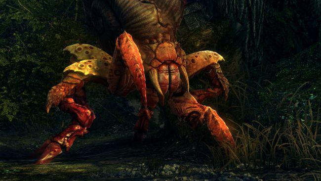 The Witcher 2: Assassins of Kings - Screenshots - Bild 1