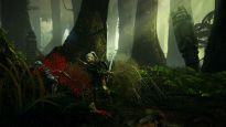 The Witcher 2: Assassins of Kings - Screenshots - Bild 16