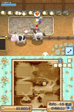 Harvest Moon: Grand Bazaar - Screenshots - Bild 7