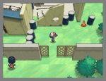 Pokémon Schwarz / Weiß - Screenshots - Bild 4