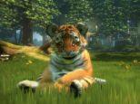 Kinectimals - Screenshots - Bild 4