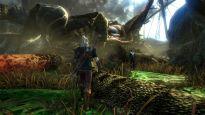 The Witcher 2: Assassins of Kings - Screenshots - Bild 13