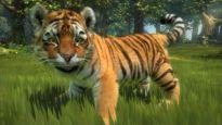 Kinectimals - Screenshots - Bild 5