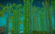 World of WarCraft: Cataclysm Beta - Vash'jir - Screenshots - Bild 16