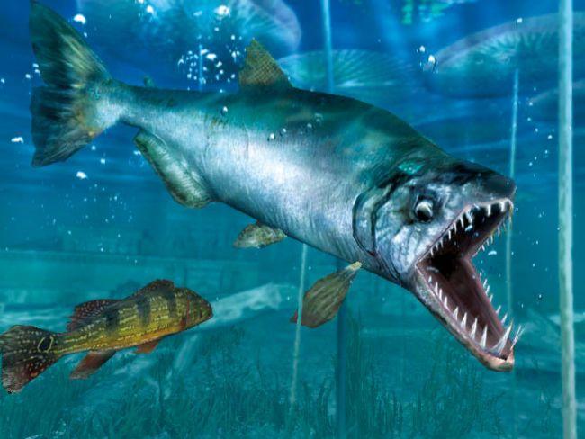 Shimano Extreme Fishing - Screenshots - Bild 16