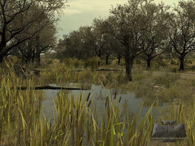 ArmA II: Operation Arrowhead - Screenshots - Bild 2