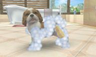 Nintendogs + Cats - Screenshots - Bild 4