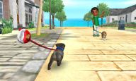Nintendogs + Cats - Screenshots - Bild 5