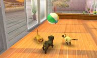 Nintendogs + Cats - Screenshots - Bild 2