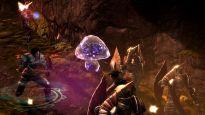 Dungeon Siege 3 - Screenshots - Bild 1