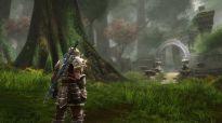 Kingdoms of Amalur: Reckoning - Screenshots - Bild 4