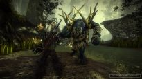 The Witcher 2: Assassins of Kings - Screenshots - Bild 18
