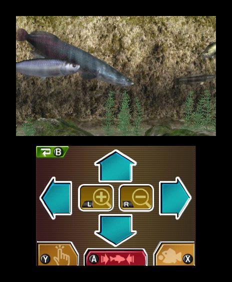 Reel Fishing Paradise 3D - Screenshots - Bild 43
