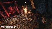 Tomb Raider - Screenshots - Bild 23