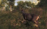 The Hunter 2011 - Screenshots - Bild 4