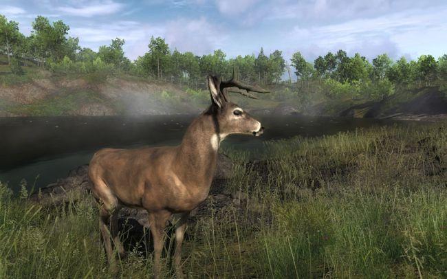 The Hunter 2011 - Screenshots - Bild 5