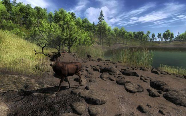 The Hunter 2011 - Screenshots - Bild 2