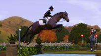 Die Sims 3: Einfach tierisch - Screenshots - Bild 4