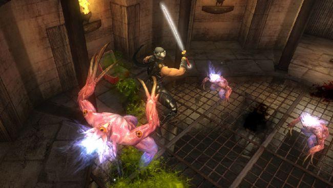 Ninja Gaiden Sigma - Screenshots - Bild 2