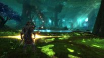 Kingdoms of Amalur: Reckoning - Screenshots - Bild 8