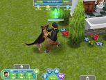 The Sims FreePlay - Screenshots - Bild 2