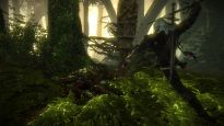 The Witcher 2: Assassins of Kings Enhanced Edition - Screenshots - Bild 14