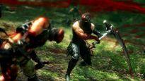 Ninja Gaiden 3 DLC - Screenshots - Bild 16
