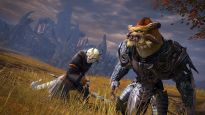 Guild Wars 2 - Screenshots - Bild 21 (PC)