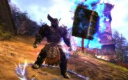Guild Wars 2 - Screenshots - Bild 13 (PC)