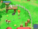 Harvest Moon: The Tale of Two Towns - Screenshots - Bild 16
