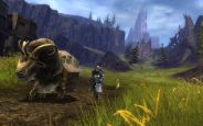 Guild Wars 2 - Screenshots - Bild 8 (PC)