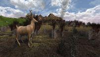 Der Herr der Ringe Online: Reiter von Rohan - Screenshots - Bild 29