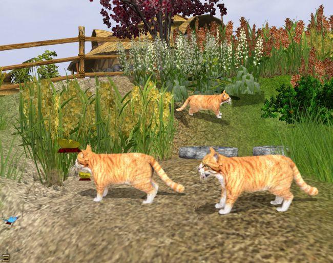 Wildlife Park: Meine Haustiere - Screenshots - Bild 4