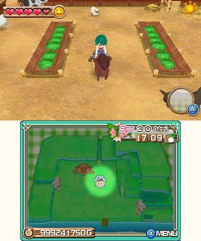 Harvest Moon: A New Beginning - Screenshots - Bild 13
