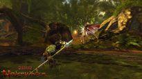 Neverwinter Fury of the Feywild - Screenshots - Bild 7