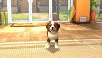 PlayStation Vita Pets - Screenshots - Bild 7