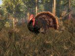 the Hunter 2014 - Screenshots - Bild 19