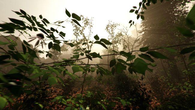 The Forest - Screenshots - Bild 7