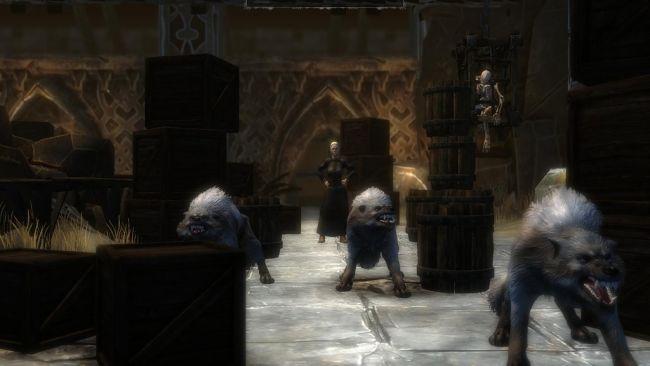 Das Schwarze Auge: Blackguards - Screenshots - Bild 5