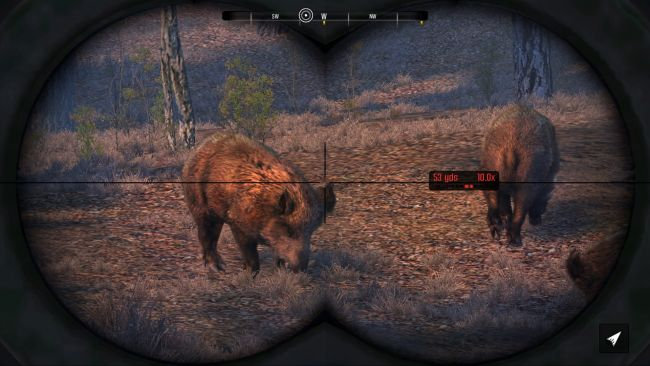 Cabela's Big Game Hunter: Pro Hunts - Screenshots - Bild 5
