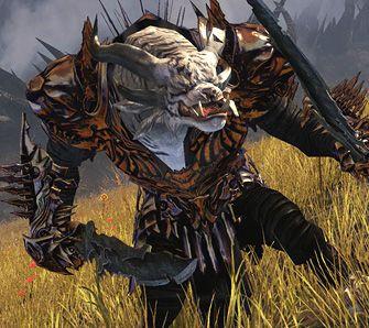 Guild Wars 2 - Test