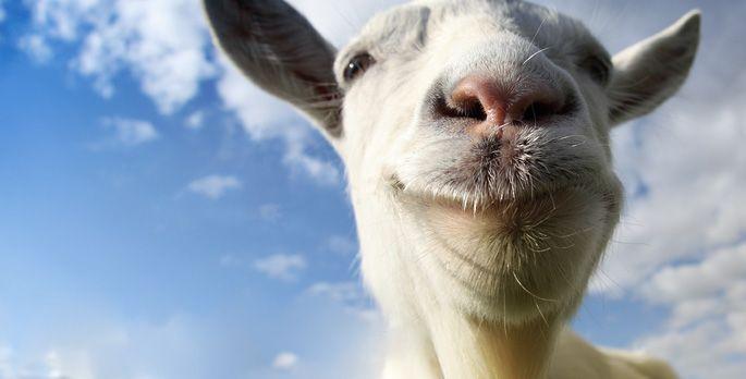 Goat Simulator - Test
