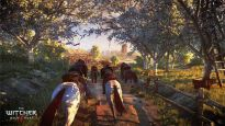 The Witcher 3: Wilde Jagd - Screenshots - Bild 19