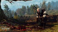The Witcher 3: Wilde Jagd - Screenshots - Bild 1