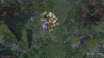 Sword Coast Legends - Screenshots - Bild 2